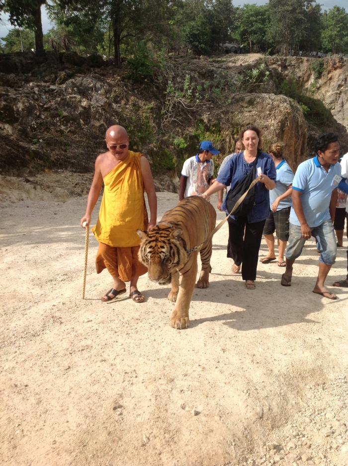 Claire, the Monk, and the Tiger