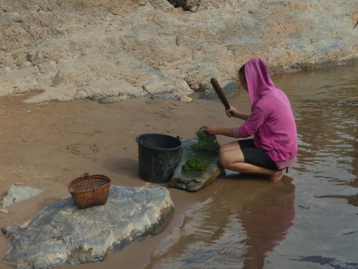 Woman beating river seaweed
