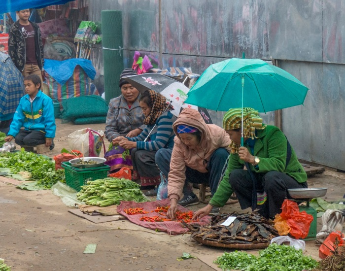 Daily Market scene