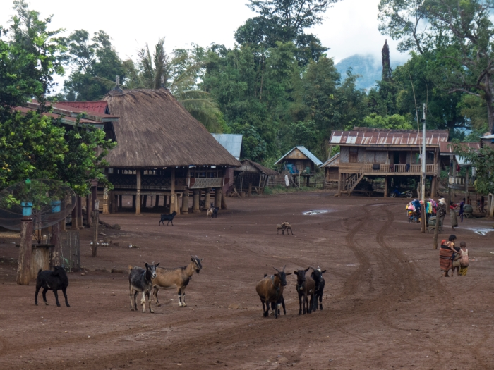 Walking to the center of the village