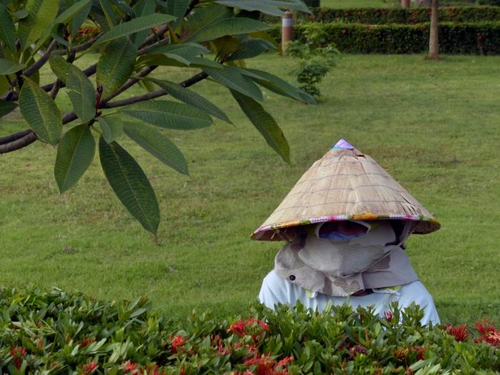In Ventiane this woman gardner is avoiding a suntan