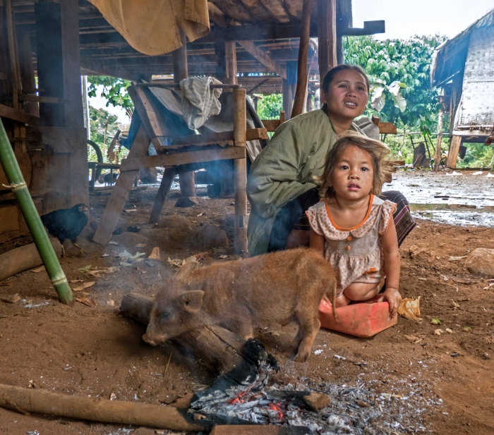 Pig and Child warmed by the fire