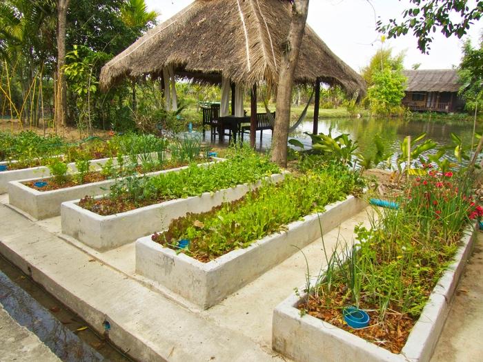 Our herb garden