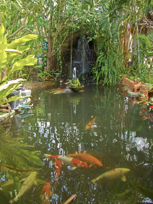 Fish Pond at entry