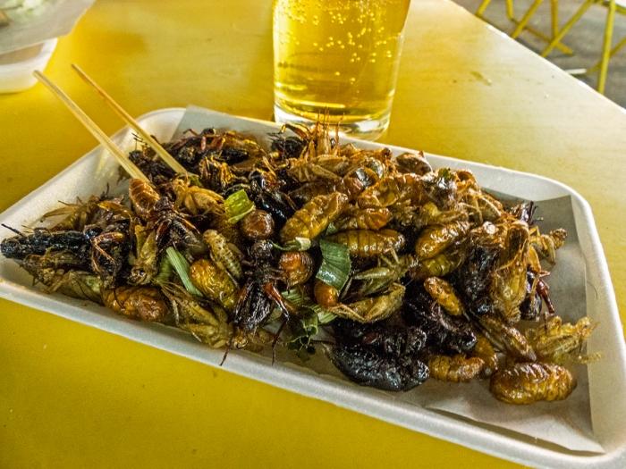 Yummy bugs