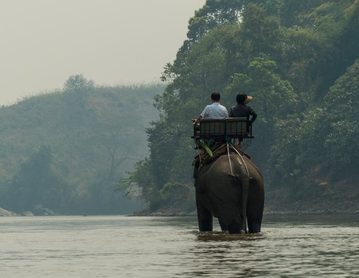 Tourists riding the elephants